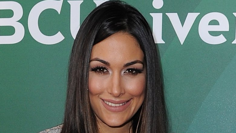 Brie Bella Celebrates First Mother's Day!