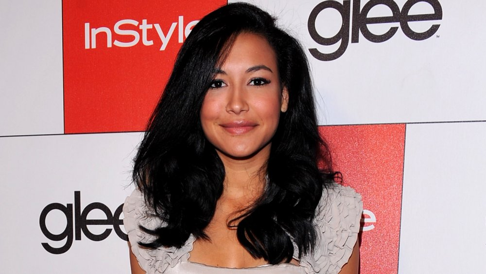 Glee co-star begs to be allowed to go search for Naya Rivera