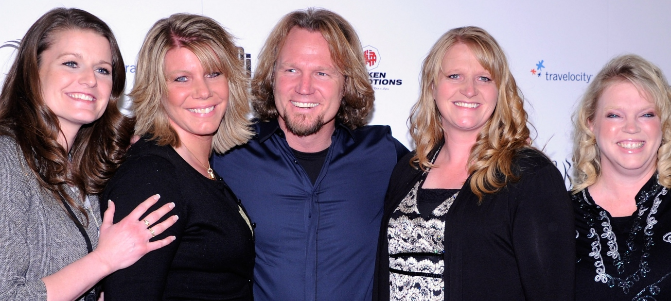 Image result for sister wives