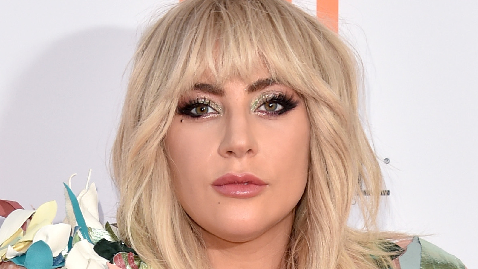 Here's How Much Prison Time Lady Gaga's Dog Thieves Could Be Facing.jpg