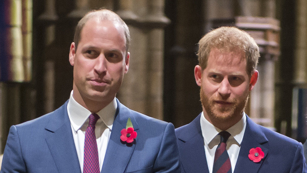 Prince William and Prince Harry standing side-by-side