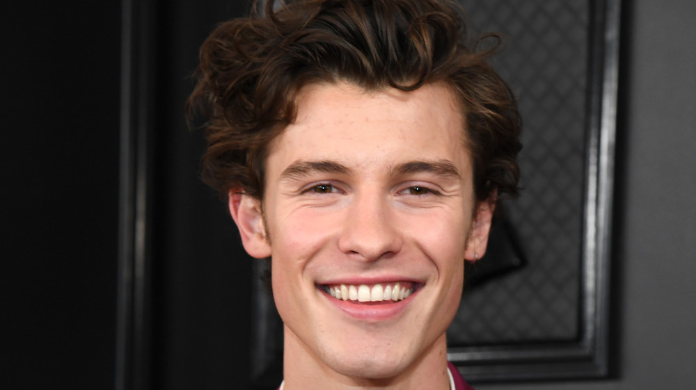 Shawn Mendes at the Grammy Awards