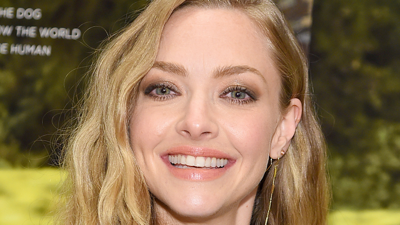 The Hidden Meaning We All Missed In Amanda Seyfried's Golden Globes Outfit.jpg