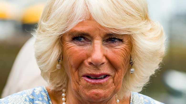 Camilla Parker Bowles feathered hair