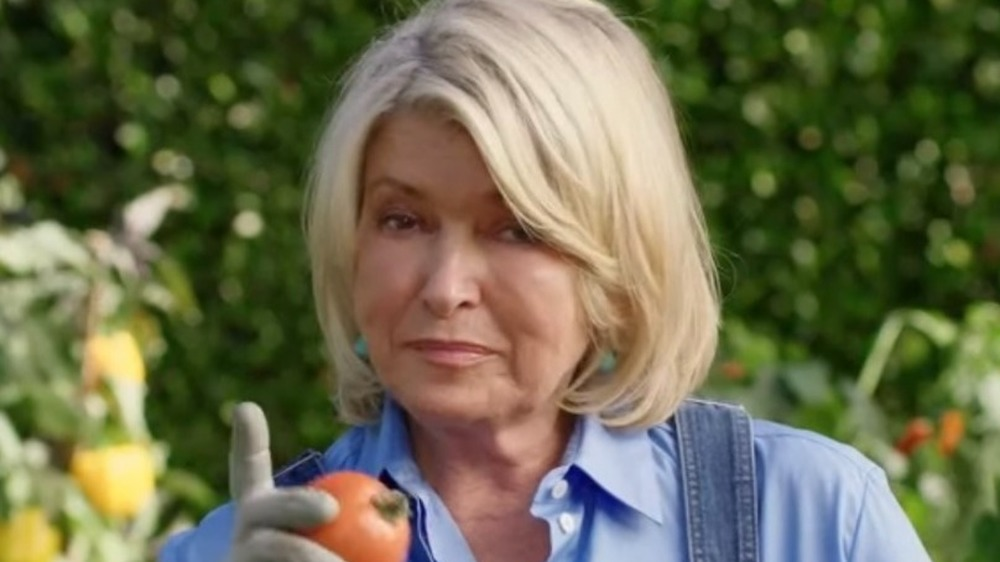 Martha Stewart acting in Scotts Miracle-Gro commercial